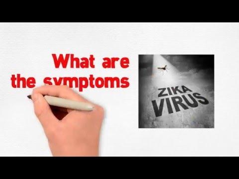 Video Is Zika virus deadly ?  What are the symptoms of Zika virus disease ?