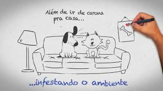 Effipro Dogs 03