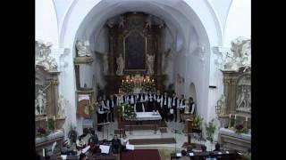 preview picture of video 'Noc kostelů 29-05-2009 kostel Nanebevzetí Panny Marie'