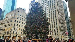Christmas Tree at Rockefeller Center Plaza, 2019 Holiday Season