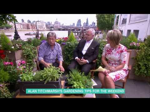 Alan Titchmarsh's Gardening Tips | This Morning