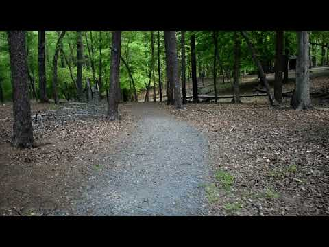 I was wrong.  This trail was moderate.  The Hattaway Trail IS strenuous.