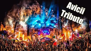 David Guetta: Titanium VS Avicii: Hey Brother (Afrojack Mashup) - Tomorrowland 2018