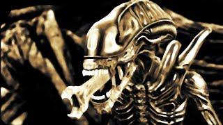 Полная История из жизни Шестой (Aliens vs. Predator 2010)