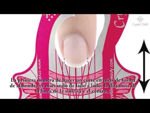 Dermatofitnye los hongos de las uñas