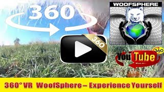 360 Videos  | Chase Films FreeRanging 360º | VR | Virtual Reality | WooFSphere