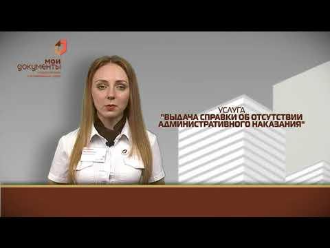 """""""Мои документы"""". Выдача справки об отсутствии административного наказания"""