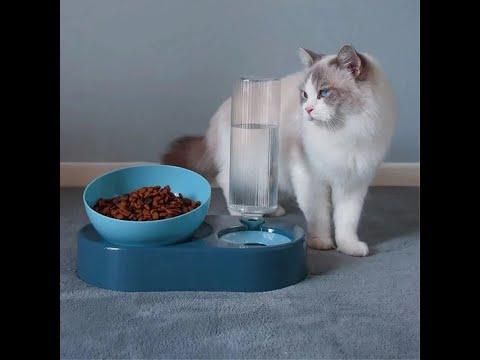 Миска для собак/котов с поилкой пластиковая VIPDOG белая (VG-28351) Video #1