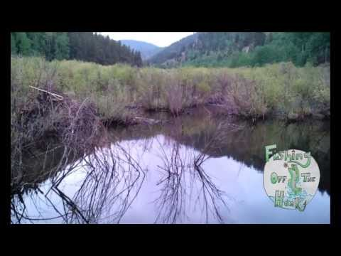 Private Pond – Fishing Off the Hook