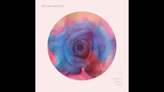 Shawn Mendes     If I Can't Have You (tłumaczenie)