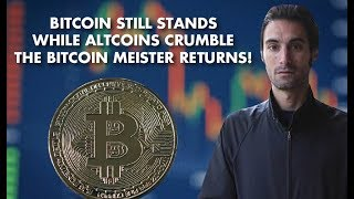 Bitcoin Still Stands While Altcoins Crumble – The Bitcoin Meister Returns!