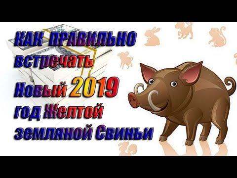 Василиса володина гороскоп на 2017 год лев
