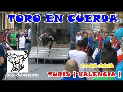 BOUS AL CARRER - TURÍS (V) 2018 - TORO EN CUERDA DE ALBERTO GRANCHEL 16-6-2018