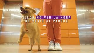 UN PARQUE DE DIVERSIÓN PARA TI Y TU MASCOTA CC Santafé Medellín