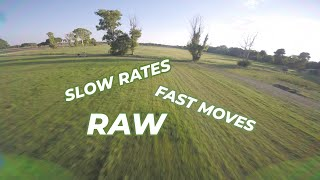 PIANA BELLA RAW - SLOW RATES, FAST MOVES! | FPV Freestyle