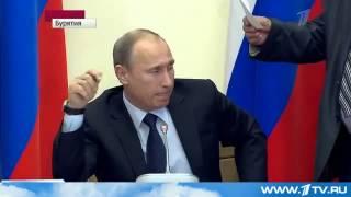 Путин разнес в щепки работу лесной отрасли