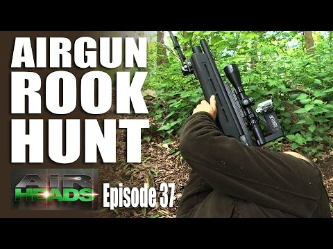 Airgun Rook Hunt – AirHeads, episode 37