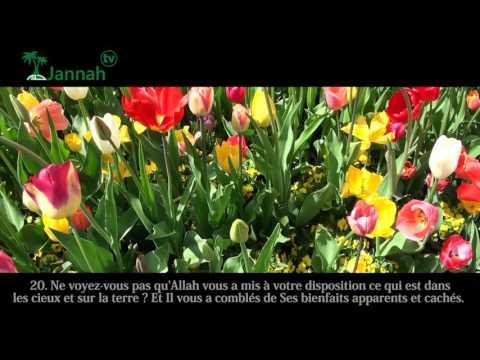 Recitation de sourate  Luqman par Anas el Emadi
