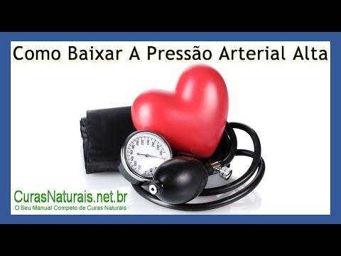 Cuidados de emergência médica para algoritmo de crise hipertensiva de ações