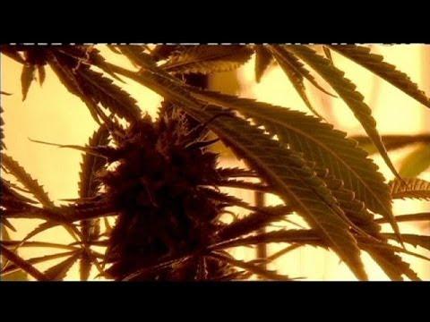 Νέα Υόρκη: Νομιμοποίηση της χρήσης μαριχουάνας για ιατρικούς σκοπούς