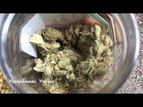 A prosztatagyulladás és a prosztata adenoma leírása