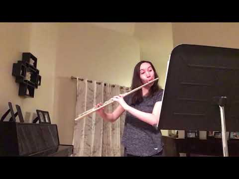Here is the first movement from the C.P.E Bach Sonata in A Minor for Flute Alone