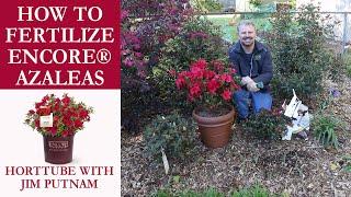 How to Fertilize Encore® Azaleas - Acid Loving Plants
