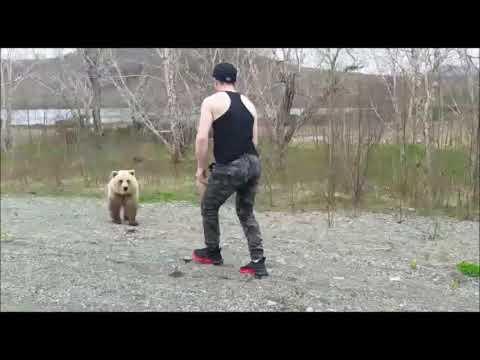 На Камчатке медведь преследовал незадачливого туриста