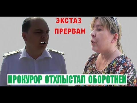 Оленю Ушакову и желтозубой выдре Васильевой втащил прокурор . ст Ленингралская . васильева-ушаков