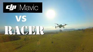 DJI FPV Chasing MAVIC (feat. SUETER VERDE)