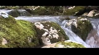 Zvukovi Prirode ..Voda