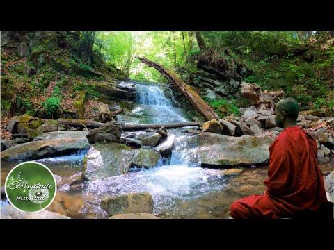 Relaxe a Mente | Meditao profunda e som de gua corrente