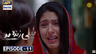 Neeli Zinda Hai Episode 11   Ary Digital Dramas