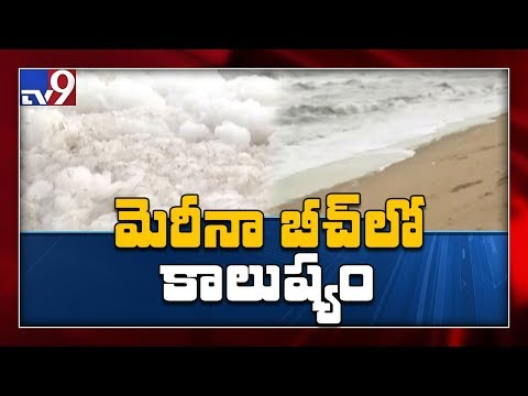 Frothy and toxic bubbles cover one of India's most famous Beaches - TV9