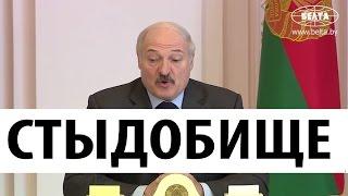 НУ И НОВОСТИ! Лукашенко в шоке от Беларуси! Что происходит в стране?
