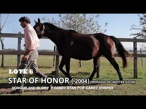 Lote STAR OF HONOR (ARG)