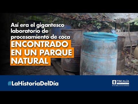 Así era el gigantesco laboratorio de procesamiento de coca encontrado en un parque natural