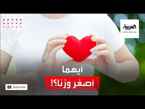 العرب اليوم - شاهد: قلب المرأة أصغر وأخف وزنًا من قلب الرجل