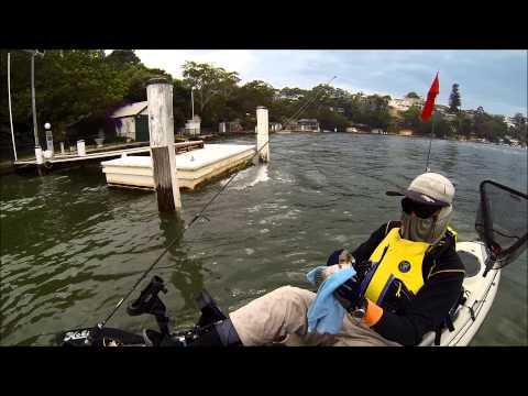Darwin's Fishing Diary 03-Nov-2013 Tom Ugly's Bridge