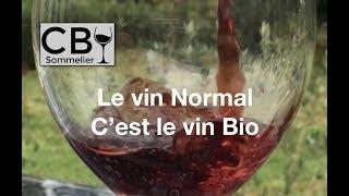 Vignette de Le Vin Bio c'est le Vin Normal !!
