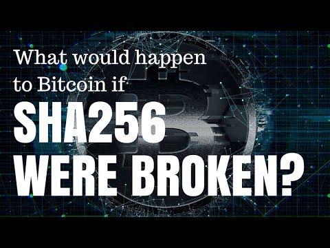 Bitcoin rinkos dominavimo diagrama