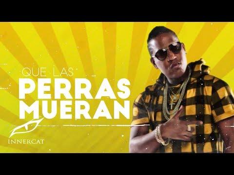 Que Hablen (Letra) - El Boy C (Video)