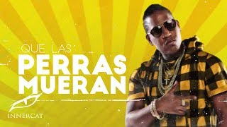Que Hablen (Letra) - El Boy C (Video)