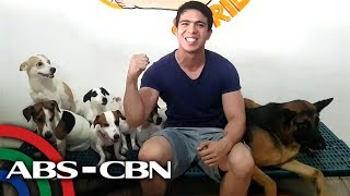 Milo & friends | Rated K