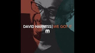 Davdi Harness - We Got It