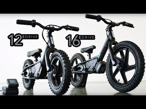 2019 Harley-Davidson STACYC 12eDRIVE in Sunbury, Ohio