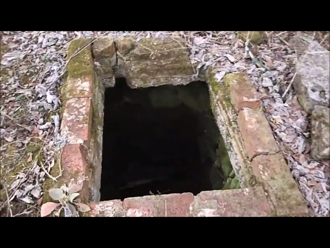 What's In The Well? | Aquachigger