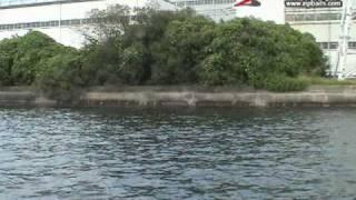 ガタピン 大分県 チヌ攻略 ボート編 2アングラー:緒方裕次郎
