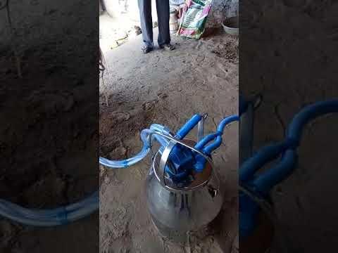 Fixed Milking Machine