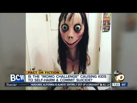 f7920d57a Google News - Parents warned about children playing Momo Challenge ...